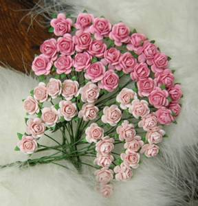 Bilde av Nr 50, Roser 1,2 Lys rosa